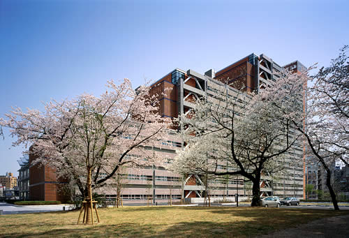 Advance your career by pursuing your graduate or post-graduate degree in some of the best universities in Japan. Here's a list of English-taught programs in the field of Economics.