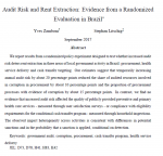 Does a higher risk of an external audit reduce corruption in procurement and service delivery